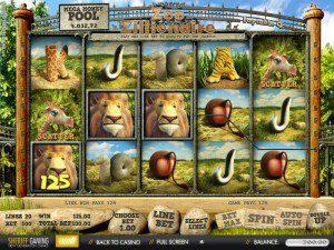 speel de zoo zillionaire bij Amsterdams Casino